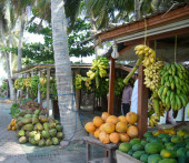 Salalah, Oman, banchi frutta.