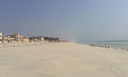 """Viaggi in Oman Muscat, Ras al Jinz, Sur, Nizwa, tour in Oman nei deserti con Salalah e vacanze mare. Viaggi in Oman lusso o standard. Viaggi Oman in Muscat, Salalah e vacanze mare: """"Bellezze dell' Oman"""""""