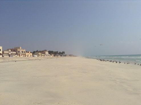Viaggi in oman foto del lungomare di salalah capitale for Soggiorno mare oman
