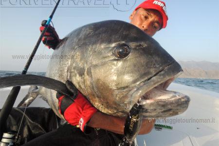 Pesca in Oman in mare, da barca e da riva. Pesca G.T. pesca d'altura, Vertical Jigging, Popping, Fly Fishing nel Mare Arabico Sud Oman. Pesca sportiva in mare in Oman nell' Oceano indiano.
