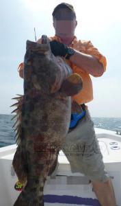 Pesca nelle Isole del Sud Oman, Mare Arabico, famose per la pesca da Big Game. Foto della barca per la pesca, popping, jigging al G.T. ed altri pesci da record. Foto di una cernia tropicale.