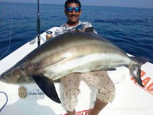 Pesca nelle Isole del Sud Oman, Mare Arabico, famose per la pesca da Big Game. Foto della barca per la pesca, popping, jigging al G.T. ed altri pesci da record. Foto di un cobia di circa 60 kg. Il cobia è l' unico percide che vive in acque salate.
