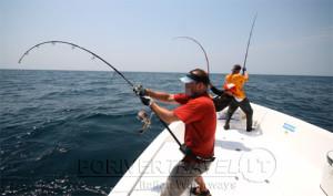 Pesca nelle Isole del Sud Oman, Mare Arabico, famose per la pesca da Big Game. Foto della barca per la pesca, popping, jigging al G.T. ed altri pesci da record. Foto di uno strike collettivo dalla barca