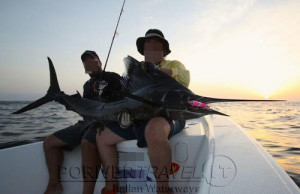Pesca nelle Isole del Sud Oman, Mare Arabico, famose per la pesca da Big Game. Foto della barca per la pesca, popping, jigging al G.T. ed altri pesci da record. Foto di un bel pesce vela.