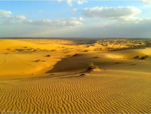 Foto del deserto di wahiba sands nell' Oman del nord