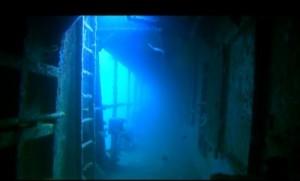 Crociere in Oman, nave Saman Explorer: immersione nel Mar Arabico nel Dhofar, foto sub di un relitto.
