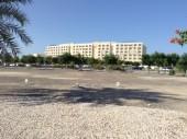 Vacanze mare in Oman, hotel Millennium Muscat. Foto dell'hotel.