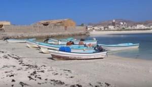 Fly fishing Oman, foto di al Hallaniyat nel Mare Arabico