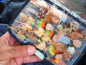 Fly fishing in Oman, foto di mosche da riva per tecnica di pesca a mosca in mare ad al Hallaniyat